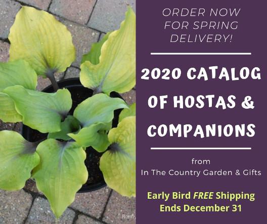 2020 Catalog of Hostas and Companions - Early Bird Free Shipping