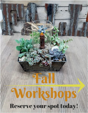 Fall Workshops - Reserve your spot today!