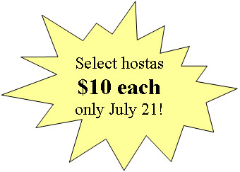 Select Hostas $10 each only on July 15, 2017!