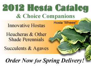 2012 catalog of hostas and choice companions