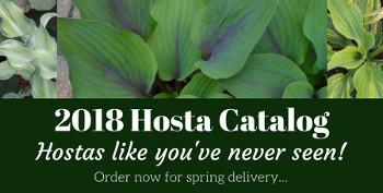 2018 Hosta Catalog