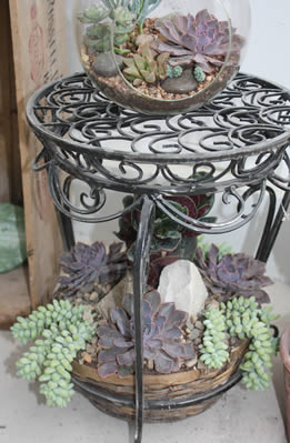 Succulent table with terrarium