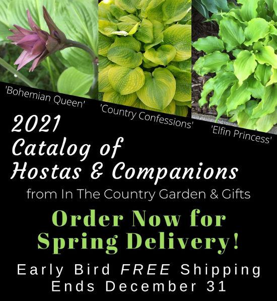 2021 Catalog of Hostas & Companions